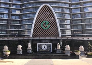 国祯健康大厦——风水雕塑